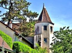 Château Rouillaud - Français:   Tourelle sud du château Rpouillaud. Pesmes. Haute-Saône