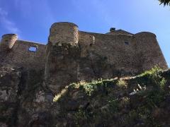 Château -  Château de Roquefère (Aude)