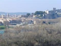 Eglise Notre-Dame-des-Pommiers - Français:   Beaucaire vue du chateau du Roi René à Tarascon