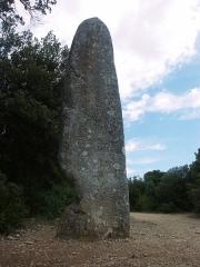 Menhir de la Pierre Plantée - English: Lussan: Menhir