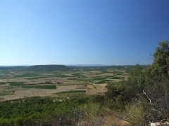 Oppidum -  The village of Nages is dominated by the two Gaulish oppidums of Roque de Viou, and of Nages on the Roque de Viou hill to the north. Panorama.  Looking over Sinsans. D40 in foreground.