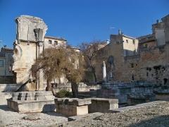 Ancienne abbaye de Saint-Gilles - Vis de Saint Gilles (30)