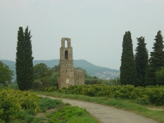 Ruines de la chapelle Saint-Martin - Français:   Chapelle de Saint-Martin dans la commune de Saint-Victor la Coste