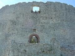 Ruines du Castellas - Français:   Castellas de Saint-Victor  la Coste (Gard, 30). Entrée du château.