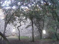 Ruines du Castellas - Français:   Castellas de Saint-Victor la Coste (Gard,30). Cour intérieure.