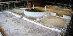 Parcelles contenant les vestiges d'une villa et de mosaïques gallo-romaines - Français:   Mosaïque aux chardons de la villa gallo-romaine des Prés Bas à Loupian (Hérault).