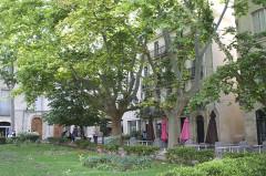 """Ancien Hôtel de Sarret dit de la """"Coquille"""" -  Montpellier, France"""