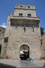 Ancien observatoire dit Tour de la Babotte -  Defence tower (la Tour Babote) and gate of Montpellier