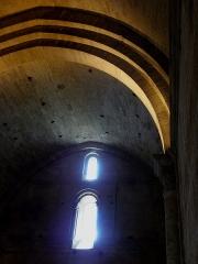 Ensemble historique et archéologique de la cité épiscopale et canoniale de Maguelone - Voûtes de la cathédrale Saint-Pierre-et-Saint-Paul de Maguelone (34).