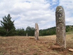 "Menhirs constituant le premier groupe dit de la Fage - English: ""Cham des Bondons"" site, Lozère, France: the stone row with the three menhirs of Chabusse, part of the second group so-called La Fage."
