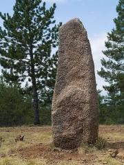 Trois menhirs, du deuxième groupe dit de la Fage, à 500 m du premier du même nom - English: One of the standing stones in the 'Cham des Bondons' site, Lozère, France.