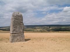 Trois menhirs, du deuxième groupe dit de la Fage, à 500 m du premier du même nom - English: The «Pierre des trois paroisses» (='Three Parishes Stone'), one of the standing stones in the 'Cham des Bondons' site, Lozère, France.