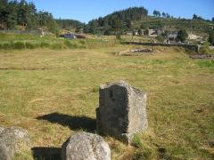 Cité antique -  Javols - réserve archéologique Vestiges de la «domus Peyre»