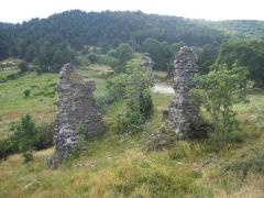 Ruines du château -  Luc - Ruins of Castle. some layers of herring-bone masonry are visible in the wall, on the right. Quelques assises d'appareil en arête-de-poisson sont visibles dans le mur de droite.