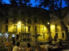 Fontaine publique des Nou Raigts - Català: Font dels Nou Raigs a Ceret (Pirineus Orientals, França).