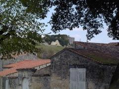 Château -  Château de Bouteville, Charente, France