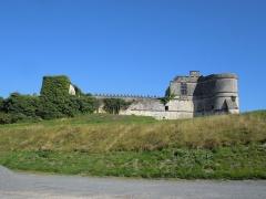 Château - Deutsch: Château de Bouteville, Blick von Süden