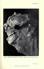 Gisement paléolithique dénommé Gisement de la Quina - English: La Quina, Gardes-le-Pontaroux, Charente departement, France. Profile of the skull of the skeletton found by Léon Henri-Martin on September 18, 1911. Photo taken by L. Henri-Martin, reproduced in Robert Munro, Palæolithic Man and Terramara Settlements in Europe, 1912, plate XIV. File:P.158-fig.48-Palæolithic Man and Terramara Settlements in Europe.jpg shows a precise drawing of the location where this skeletton was found.