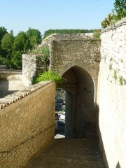Château - English:   old castle and keep of Montignac, Charente, SW France