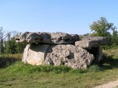 Dolmen dit de Garde Epée -  Dolmen de Garde-Épée à Saint-Brice en Charente, France