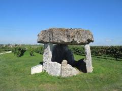 Dolmen - Deutsch: Dolmen in den Weinbergen bei Saint-Fort-sur-le-Né