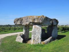 Dolmen - Deutsch: Dolmen bei Saint-Fort-sur-le-Né