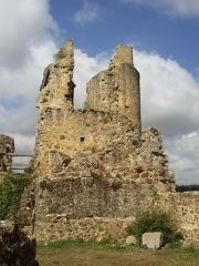 Ruines du château - Français:   Château de Saint-Germain-de-Confolens