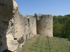 Ruines du château - Français:   Rempart sud, Château de St-Germain-de-Confolens, Charente, France