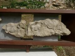 Gisement préhistorique - Français:   Reproduction de la frise (morceaux 10 et 11), Roc de Sers, Charente, France; à gauche: cheval, à droite: cheval et bison-sanglier