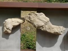 Gisement préhistorique - Français:   Reproduction de la frise (morceaux 5 et 6), Roc de Sers, Charente, France. Animal: rennes.