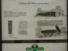 Dolmen dit de la Boixe - English: Stone of the sacrifice, Boixe forest, Cellettes, Charente, SW France