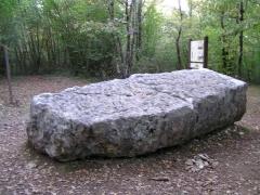 Dolmen dit de la Boixe -  Dolmen de la forêt de Boixe en Charente, dite