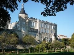 Château - Français:   Le château de Jonzac