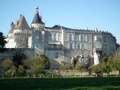 Château - Français:   Vue du château de Jonzac depuis les berges de la Seugne