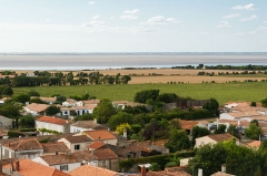 Eglise Saint-Pierre - English: Baie de l'Aiguillon, from Marsilly church tower, Charente-Maritime
