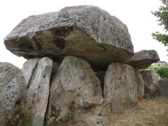 Dolmen dit La Pierre Folle - English:   dolmen of Montguyon, Charente-Maritime, SW France