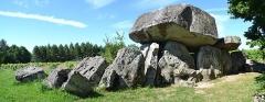 Dolmen dit La Pierre Folle - Français:   Le dolmen et l\'allée couverte.