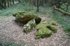 Dolmen effondré appelé La Pierre Levée de Berthe-grille - Français:   Pierre levée de Berthegille à Sablonceaux.