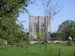 Ancien château -  Donjon de l'Isleau