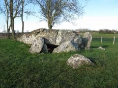 Ensemble mégalithique de la Pierre Levée -  Le dolmen de la pierre levée à La Vallée.