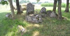 Ensemble mégalithique de la Pierre Levée - Français:   Dolmens n°2 de la Pierre Levée à La Vallée (17).
