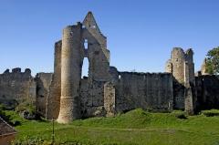 Restes du château - Deutsch: Angles-sur-l'Anglin, Burgruine Dorfseite