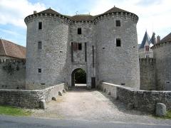 Château -  Pont de pierre remplaçant le pont-levis du château de Bourg-Archambault, Vienne (86), France