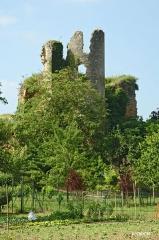Château - Français:   Ruines de Château Larcher dans le Poitou. Vue sur le donjon depuis les fossés.