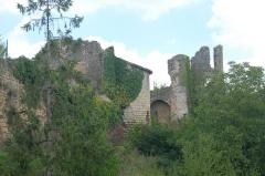 Château - Deutsch: Château-Larcher, li.Vorburg Geäudereste, re. Burgruine