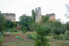 Château - Deutsch:   Château-Larcher, li.Gebäudereste Vorbugr, re. Burgruine