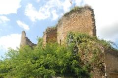 Château - Deutsch:   Château-Larcher, Burgruine von NO