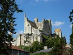 Château baronial ou des Evêques de Poitiers - Français:   Ruines du château baronnial de Chauvigny (Vienne, France)