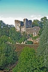 Tour aux Cognons - Deutsch: Château La Tour-aux-Cognos