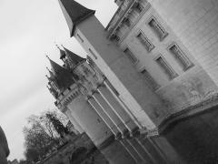 Château de Dissay -  le château de Dissay en noir et blanc en mars 2010